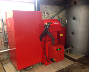 grant domestic biomass boiler